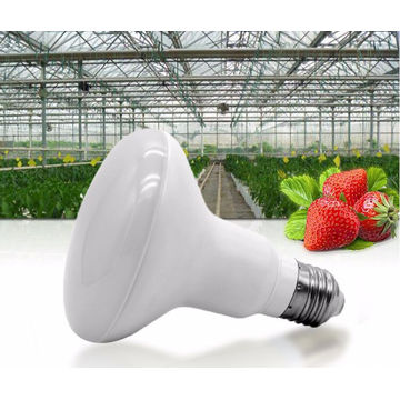Cogumelo Lâmpada 12w LED Grow Light