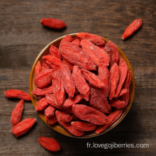 Converstional Goji Berry Économisez 3%