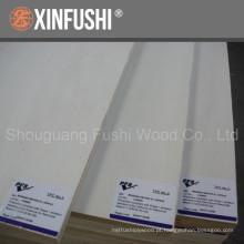 Contraplacado branco popalr usado para móveis