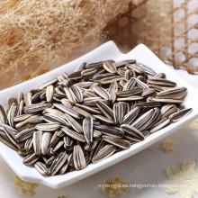 Semillas de girasol comunes chinos para comer