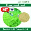 100% Pure Nature Gynostemma P. E. Gypenoside