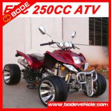 250CC EEC APPROVED QUAD (MC-365)