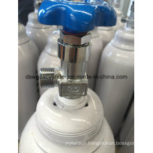 10L Competitive Price Portable Oxygen Cylinder Export to Iran