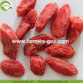 Factory Supply Obst Top Qualität Pack Goji Beeren