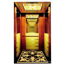 Buena máquina de lujo Qulity RoomLess Ascensor de pasajeros elevadores de uso doméstico