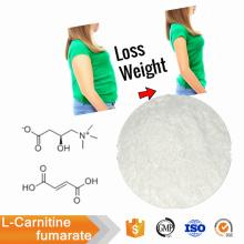 Poudre de fumarate de L-Carnitine pure de haute qualité CAS 90471-79-7