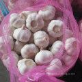 De Buena Calidad Nueva cosecha chino ajo blanco fresco