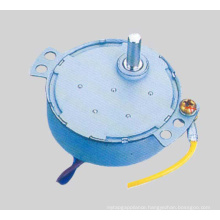 AC Synchronous Motor (49TDY-C)