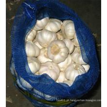 Fornecedor novo do alho branco puro da colheita