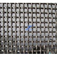 Alta qualidade frisado malha de arame (TS-J42)