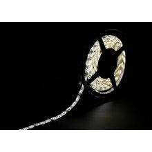 Tira de LED blanca 60SMD3528 4.8W / M