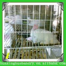 wholesale rabbit breeding cages