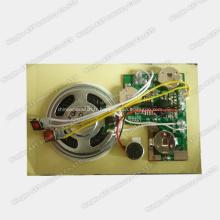 Module sonore bouton poussoir, puce sonore, module vocal