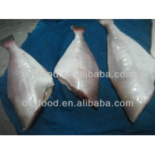Frozen Skinned Fish Leather