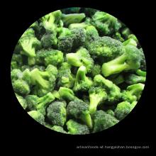 New crop IQF Frozen Broccoli organic vegetable frozen vegetables