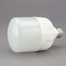 Lampe LED Ampoules LED Ampoule LED 13W Lgl3107