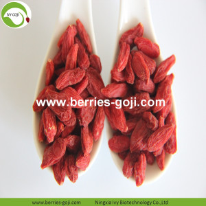 Factory Supply Fruit Premium Low-vochtige Goji-bessen