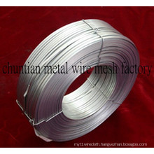 Flat Wire, Galvanized Flat Wire for Carton Nail