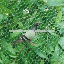 Handle Pet Bird capture Net