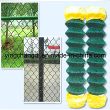 High Quality Chain Link Fence/Sports Fence/School Fence