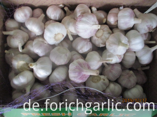 How To Save Fresh Garlic