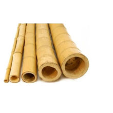 "2 ""Contemporânea Artificial Natural Bambu Pólos"