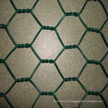 Maille hexagonale en acier inoxydable