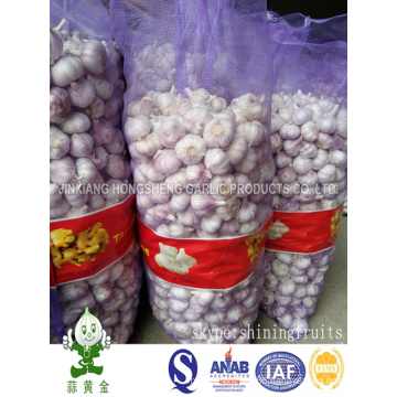 4.5cm Normal White Garlic 20kgs Loose Package From China