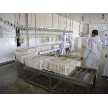 live birds Crates rolling conveyor