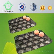 Bandeja perfurada exportada Thermoformed do empacotamento plástico da bolha para o uso fresco do pêssego popular no mercado do Chile