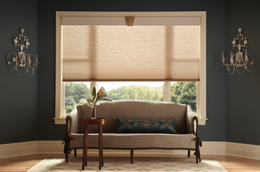 honeycomb blinds for windows
