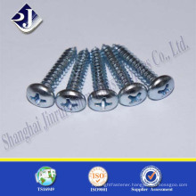 China experienced supplier stainless steel cross recess head screw