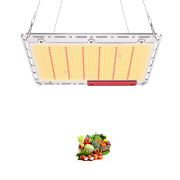 A mais nova placa quântica de espectro completo led grow light
