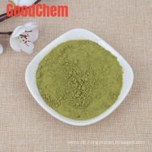 Hot Sale China Supply New Crop Dehydriertes getrocknetes grünes Paprika-Pulver