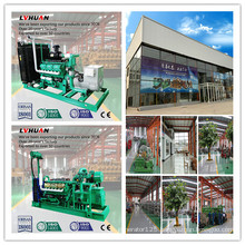 Made in China Cummins 250 Kw Wood Gas Generator Set for Sale