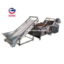 Zitronen-Seegurken-Waschmaschine-Kelp-Waschmaschine