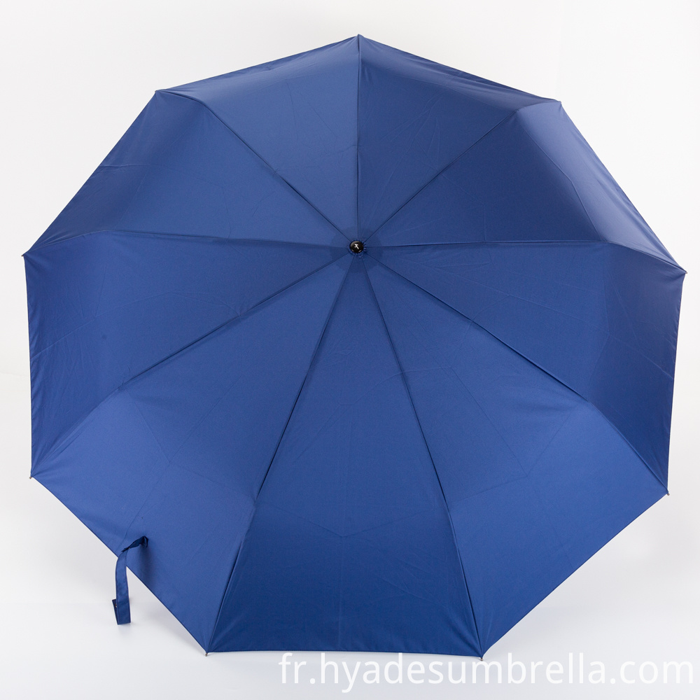 Best Auto Open Close Umbrella