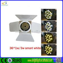 Beleuchtungsausrüstung 36 * 3W weiß & warmweiß geführtes par kann Lichter mit Scheunentür par 64