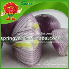 Bolsas orgánicas cultivadas de malla de cebolla roja