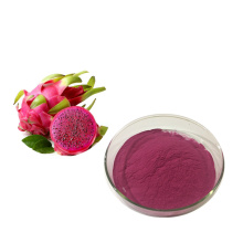 Best Quality of Freeze Dried Red Dragon Powder