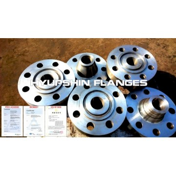 RTJ Blind Ring Type Joint Socket Weld Flanges