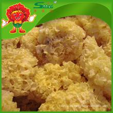 Venta al por mayor hongo blanco seco para la belleza de la piel Trébol seco comestible