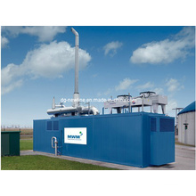 Mwm Container for Natural Gas and Biogas Generator Set
