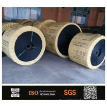 PVG PVC ignífugo sólido tecido correia transportadora