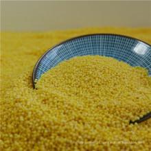 o preço mais barato de sementes de milho