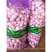Fresh Normal White Garlic 5cm