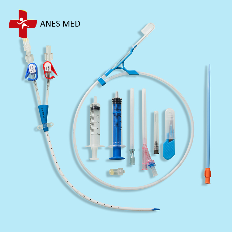 Temporary Dialysis catheter for blood purification