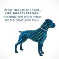 Remove pulgas e coleira para animais de estimação
