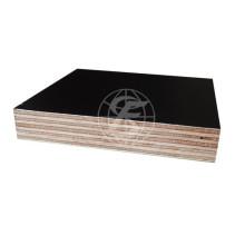 4*8feet Film Faced Plywood/ Shuttering Plywood