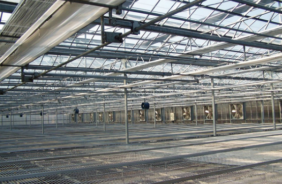 Greenhouse in Steel Structure